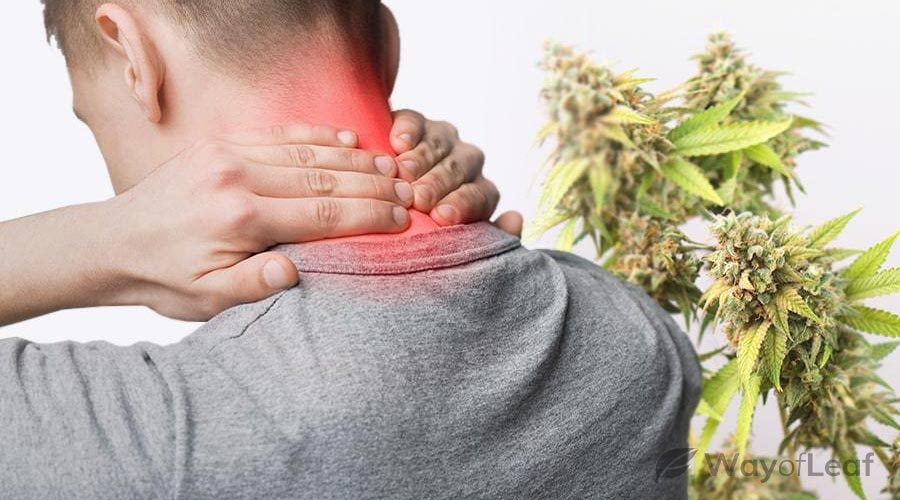 CBD Help With Inflammation