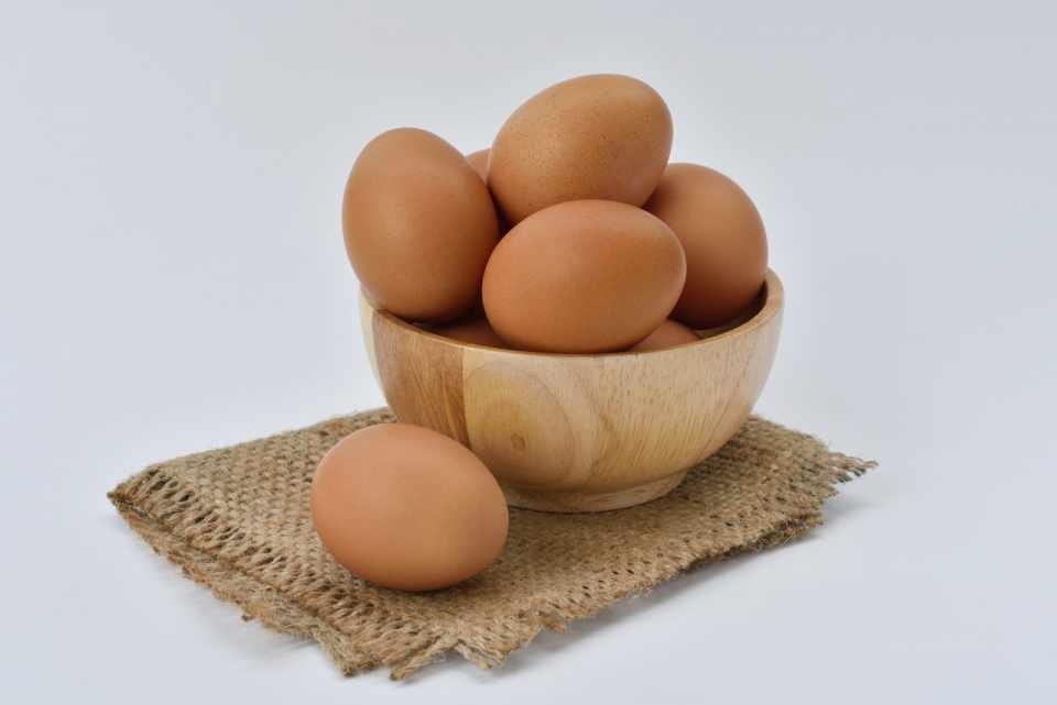 Omega 3 in Eggs